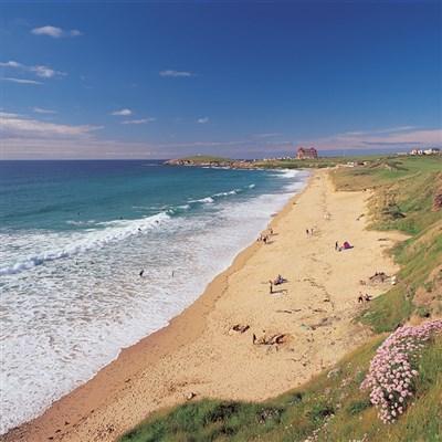 Cornish Riviera 2022