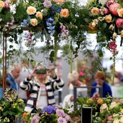 Southport Flower Show 2022
