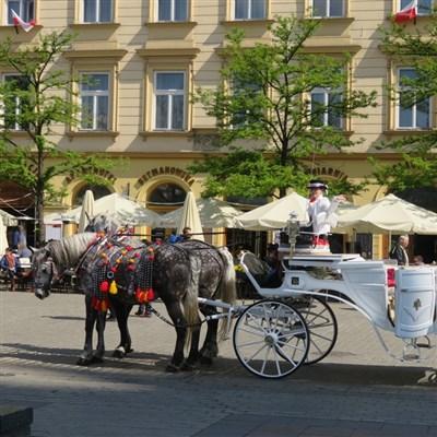 Krakow 2022